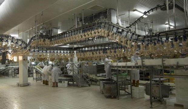 Beyaz et sektörü tavuk zammını böyle savundu