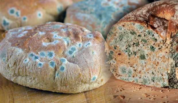 Ramazan'da ekmeğin küflenmesi nasıl önlenir?