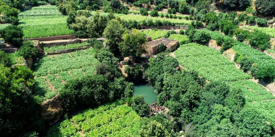 Mardin'in cenneti: Ğurs Vadisi