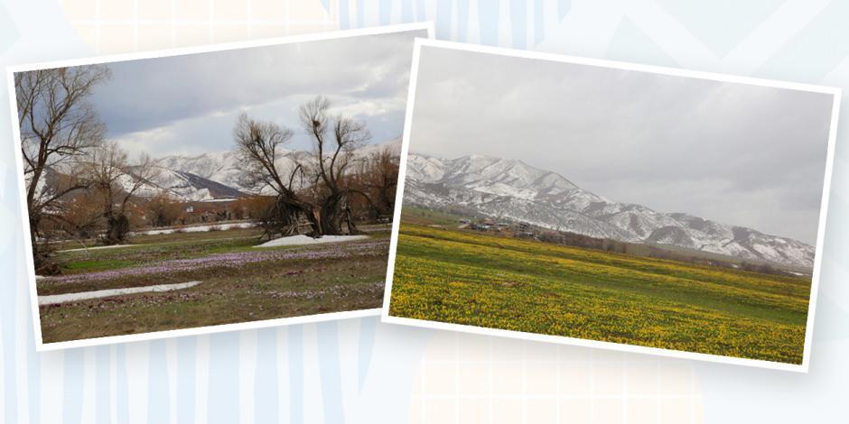 Tunceli'den masalsı fotoğraflar