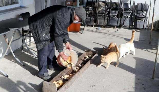Pandemide kapanan kahvehanesini sokak hayvanlarına açtı