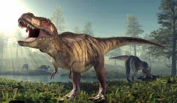 T-Rex dinozorlar hakkında çarpıcı gerçek ortaya çıktı