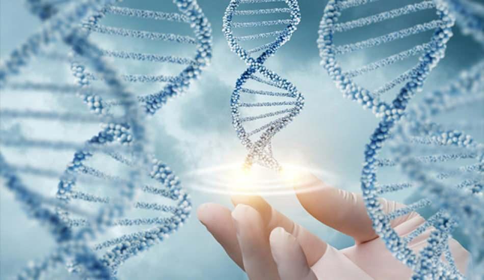 Cinayet geni nedir, belirtileri nelerdir? Kağıt Ev dizisinde cinayet geni detayı..