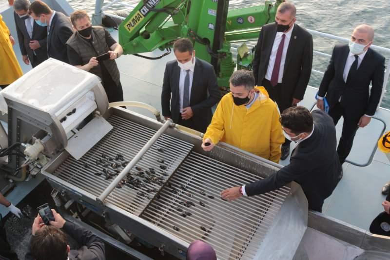 Bakan Pakdemirli Marmara Denizi'nde midye hasat etti