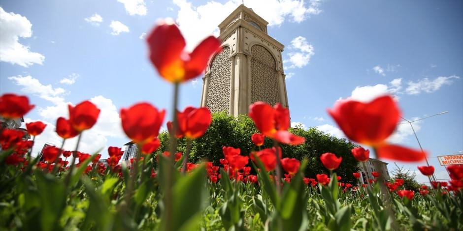 Erzurum'un tarih kokan sokakları bahar renklerine büründü