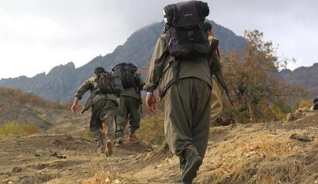 Teslim olan PKK'lıdan çarpıcı HDP itirafı!