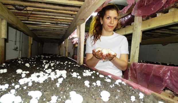Eşine destek olmak için evinin bodrumunda mantar üretiyor!