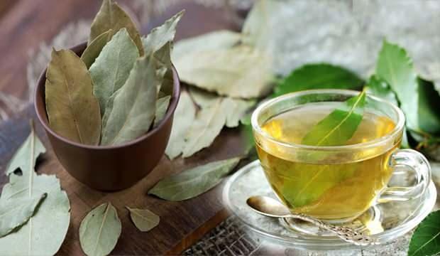 Defne yaprağı çayının faydaları nelerdir? Evde defne yaprağı yakmak neye iyi gelir?