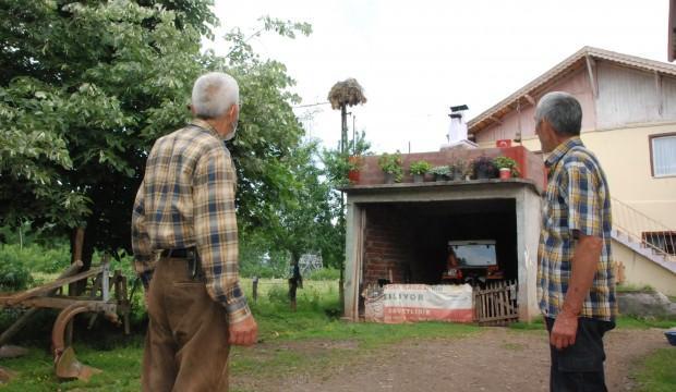 6 yıldır aynı yere yuva yapıyor, köyün maskotu oldu