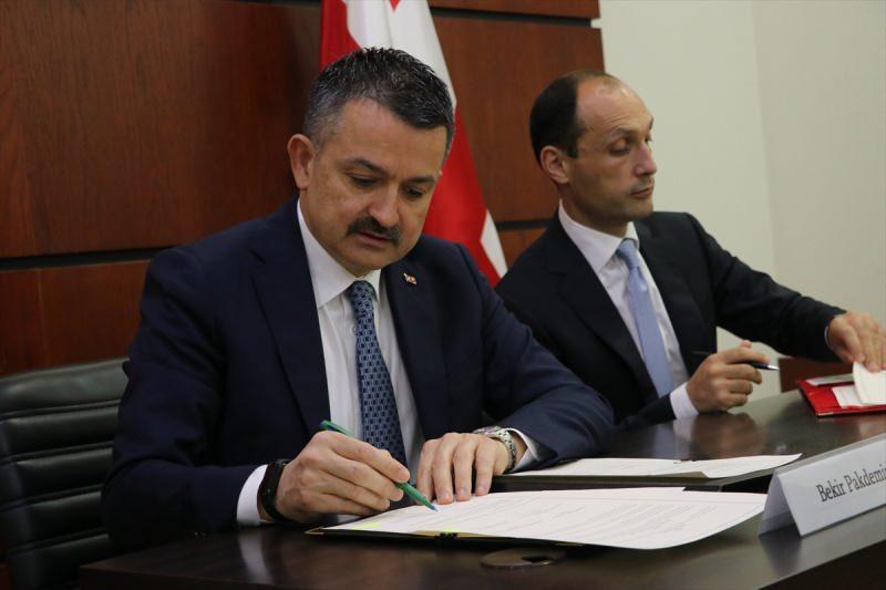 Tarım ve Orman Bakanı Bekir Pakdemirli ve Gürcistan Çevre Koruma ve Tarım Bakanı Levan Davitaşvili