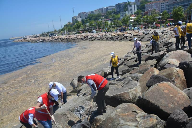 Balıkesir'de 2 saatte deniz ile sahilden 1 ton çöp toplandı