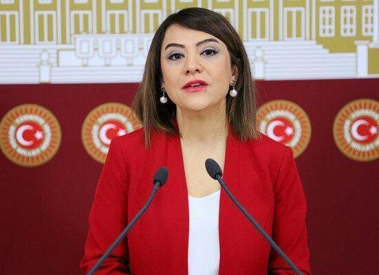 CHP Ankara Milletvekili Gamze Taşçıer