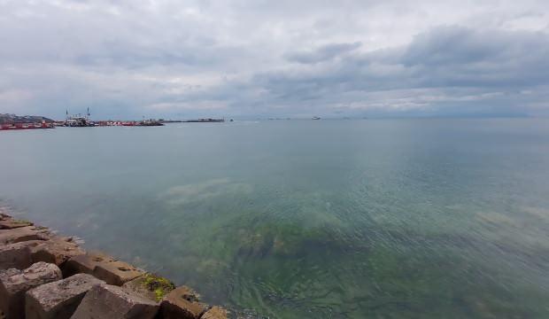 Tekirdağ'da deniz cam gibi, yağış müsilajı temizledi