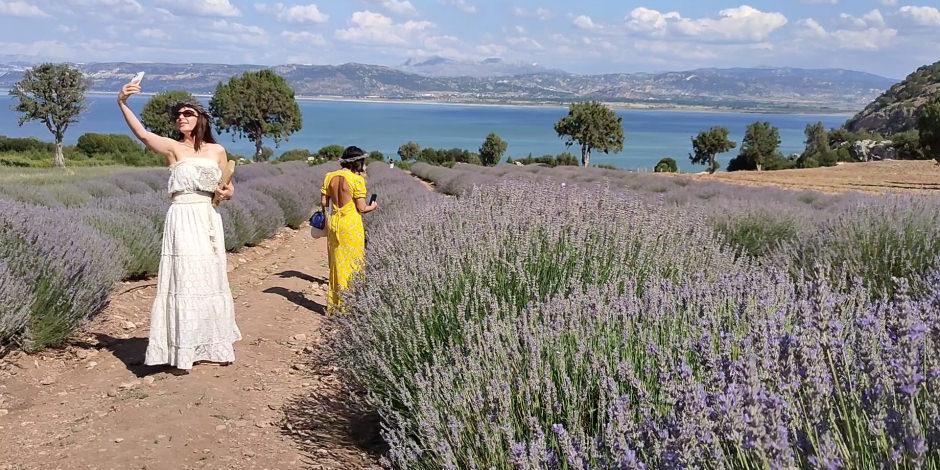 Fotoğraf çektirmek isteyenlerin yeni adresi: Göl manzaralı lavanta bahçesi