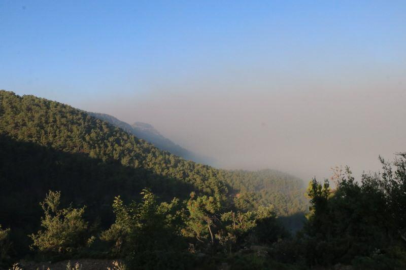 Kızılçam ormanındaki yangına havadan ve karadan müdahale sürüyor.