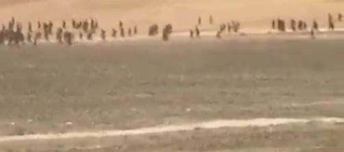Van Valiliği'nden 'kaçak göçmen' açıklaması