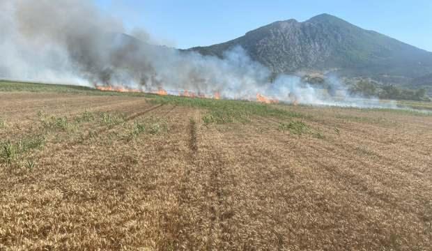 Bilecik'te 15 dönüm buğday tarlasını küle döndü