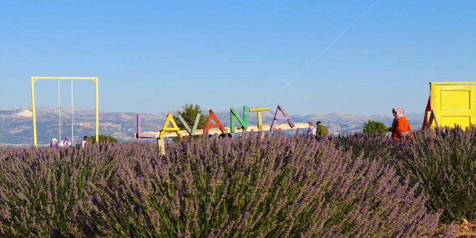 Lavanta kokulu köy Fransa'ya rakip!