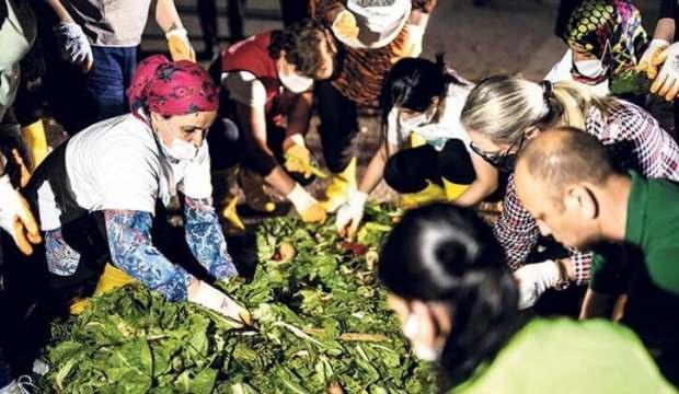 Tüm Türkiye'ye yayılacak! Ücretsiz dağıtılması planlanıyor