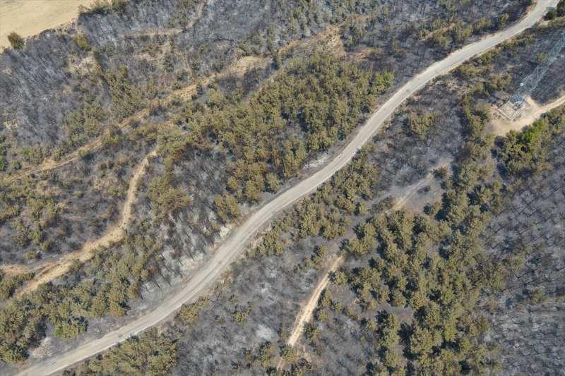 Manavgat'taki yangında zarar gören alanlar havadan görüntülendi