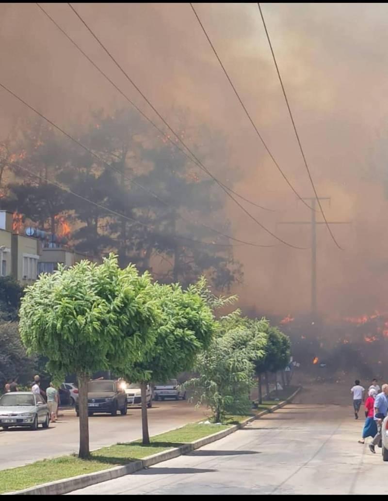 Tarım ve Orman Bakanı Bekir Pakdemirli, yangına müdahaleyi yerinde yönetmek üzere bölgeye hareket etti.