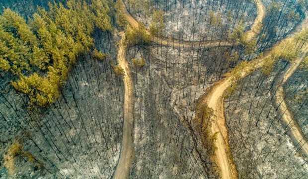 Eyyam-ı bahur orman yangınlarını nasıl etkileyecek? Sıcaklık 3 derece artarsa...