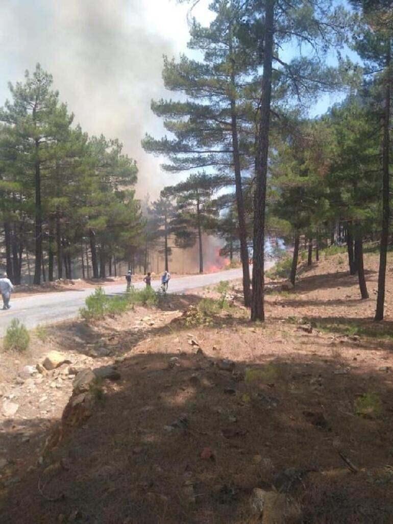 Son dakika: Kayseri'de orman yangını