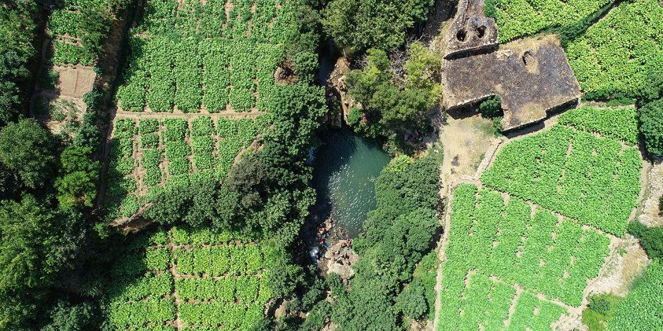 Mardin'in gizli bahçesi: Yeşil Gurs Vadisi