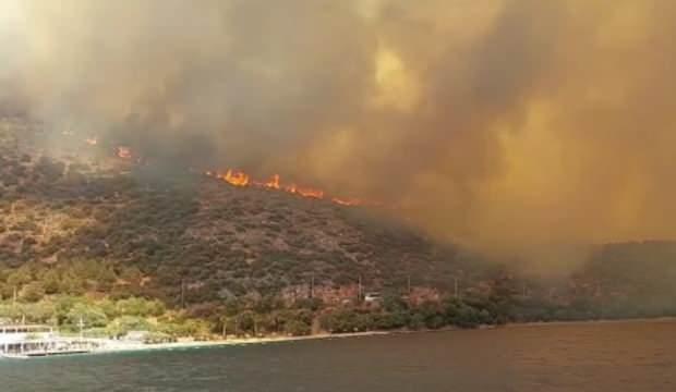 Orman yangınlarında ölü sayısı arttı