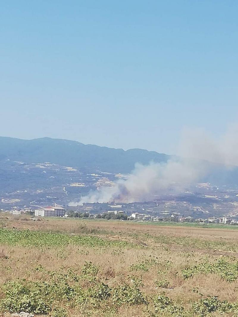 Son dakika: Hatay'da orman yangını