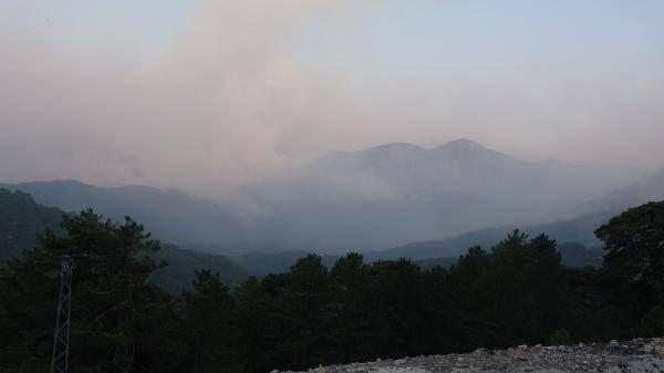 Son dakika: Muğla'daki yangınlarda şoke eden gerçek ortaya çıktı!