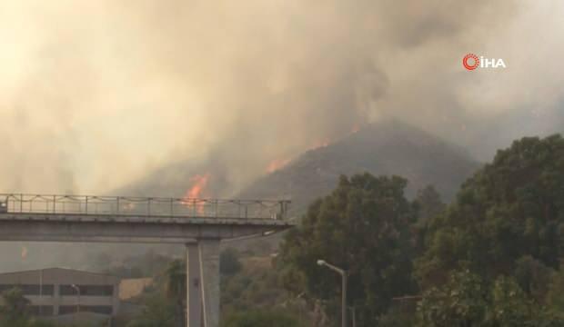 Son dakika haberi: Bekir Pakdemirli yangınlarda son durumu il il açıkladı