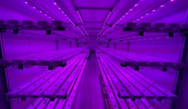 Geliştirdikleri sistemle kutuplar ve çölde bile tarım yapılabilecek