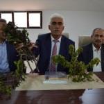 Malatya'da zirai don kayısı bahçelerine zarar verdi