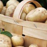 Patates sevenler dikkat!