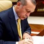 Erdoğan'dan Safitürk'ün ailesine taziye telgrafı