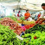 Şubatta en fazla salatalığın fiyatı arttı