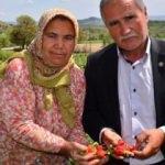 3 çiftçi yüzlerce kişinin kaderini değiştirdi