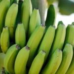 İshal tedavisinde tüketilen 10 besin