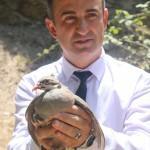 Manisa'da 4 bin keklik doğaya salındı