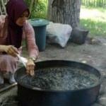 Bitlis'in ceviz reçeli ihraç ediliyor