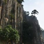 80 milyon yıllık! Türkiye'de yalnızca o ilde var