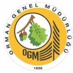 2017 Orman Genel Müdürlüğü personel başvuru şartları ve tarihi