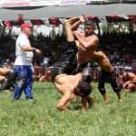 26. Geleneksel Yayla Seki Yağlı Güreşleri
