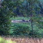 Adana'da ABD'ye ait insansız hava aracı düşmesi