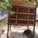 Yaban arıları kışı 'arı oteli'nde geçirecek
