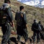 PKK'ya büyük darbe! Örgütün ağı çökertildi