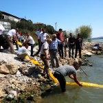 Bursa'nın iki gölüne 300 bin yavru sazan bırakıldı