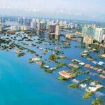 Şehirler kaybolacak, yarım milyar insan...