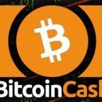 Bitcoin Cash nedir? BCC neden sürekli çıkıyor? Türkiye'den nasıl alınır?